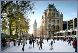 Winter Ice Skating at the Natural History Museum, London.