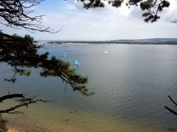 Looking towards Studland from Brownsea Island, Dorset