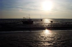 Leigh-on-Sea, Essex. Fishing is still important at Old Leigh.