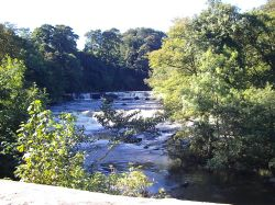 A picture of Aysgarth Falls