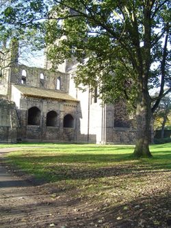 A picture of Kirkstall Abbey