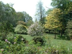 Spinners Garden, Boldre, Hampshire - General view from the house