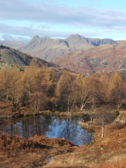 View of the Langdale Pikes from Holme Fell, north of Coniston.