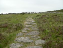 Ancient path leading to Grimspound Bronze Age village on Dartmoor