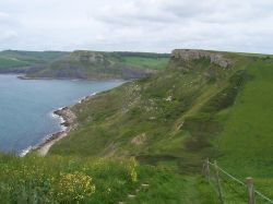 Coastal footpath between Swanage and Kimmeridge, Dorset in May.  Very steep, but beautiful.