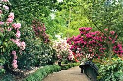 Shrewsbury - Dingle Gardens