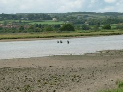 Fishing in the river Axe at Axmouth, Devon