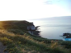 North Landing at Flamborough July 9th 2006