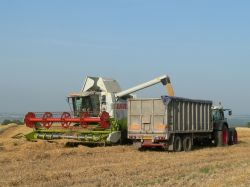 A combine harvesting in rural Somerset