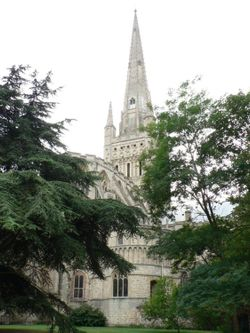 The spire of Norwich Cathedral from the cathedral close