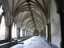 Cloisters of Norwich Cathedral.