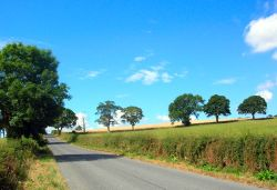 near Ponteland, northumberland.