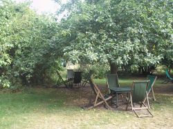 The Orchard, Grantchester