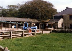 Callestock Cider Farm, Penhallow, Cornwall. 1996.
