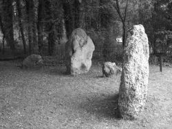 The Nine Stones, Stone Circle in Winterbourne Abbas, Dorset