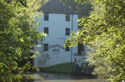 This picture was taken at Claythorpe Water Mill & Wildfowl Gardens in Lincolnshire