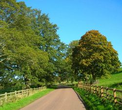 Country road at Abberwick, Alnwick, Northumberland.