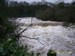 Aysgarth Falls in January 2007, Aysgarth