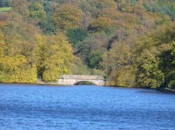Knypersley Pool, Greenway Bank Country Park, Biddulph