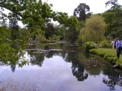 Longstock Water Gardens, Longstock, Hampshire