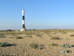 A picture of Dungeness