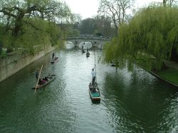 Punting on river Cam, University of Cambridge