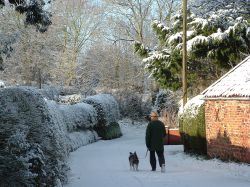 Walking the dog in snowy Bungay, Suffolk