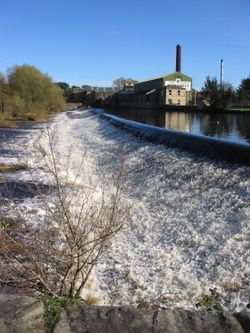 River Wharfe and Weir, Otley, West Yorkshire
