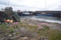 Shapinsay Harbour 2007