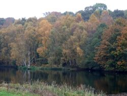 Staunton Harold Reservoir, Leicestershire