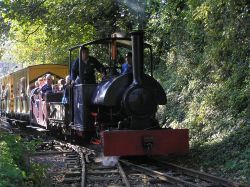 A steam train with a saddle tank ferries visitors at Amberley Museum in Amberley, West Sussex