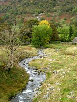 Stream Nr Glenridding.