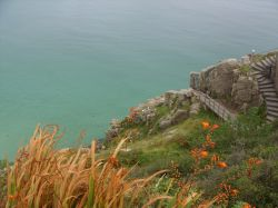 Minack in August