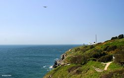 Durlston Country Park, Swanage, Dorset.