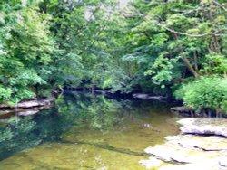 The river near Natland and Sedgewick, Cumbria