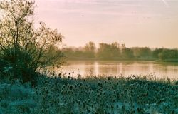 A winter Scene, Irthlingborough Lakes, Northamptonshire