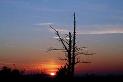 Sunrise over Hatchett Moor