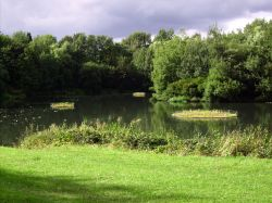 Floating islands, Bumble Hole, Dudley