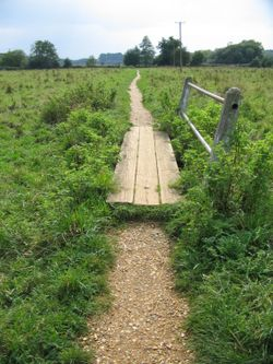 Path leading to Water Meadows