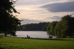 Himley Lake