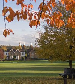 Bearsted Green in Autumn