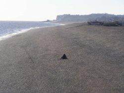 Lone fisherman on Deal beach.