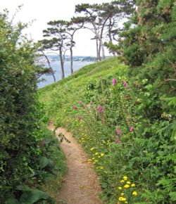 Footpath on St.Anthony's Head, near St.Mawes