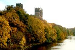 Autumn colours along the riverside.
