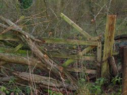 Around Up Nately - a little used gate!