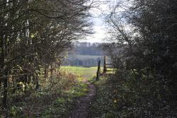 Footpath between Prestwold and Burton on the Wolds
