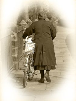 City Wall Cycle Lady