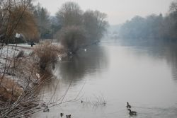 A misty cold January afternoon at Bewdley