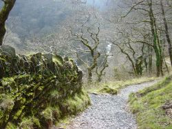 Near Watersmeet