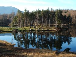 Reflections of a Tarn